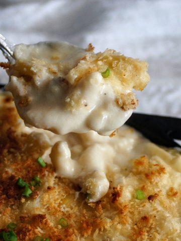 macaroni, cheese