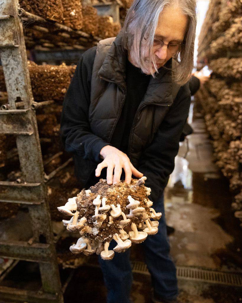 Woman holding mushroom block