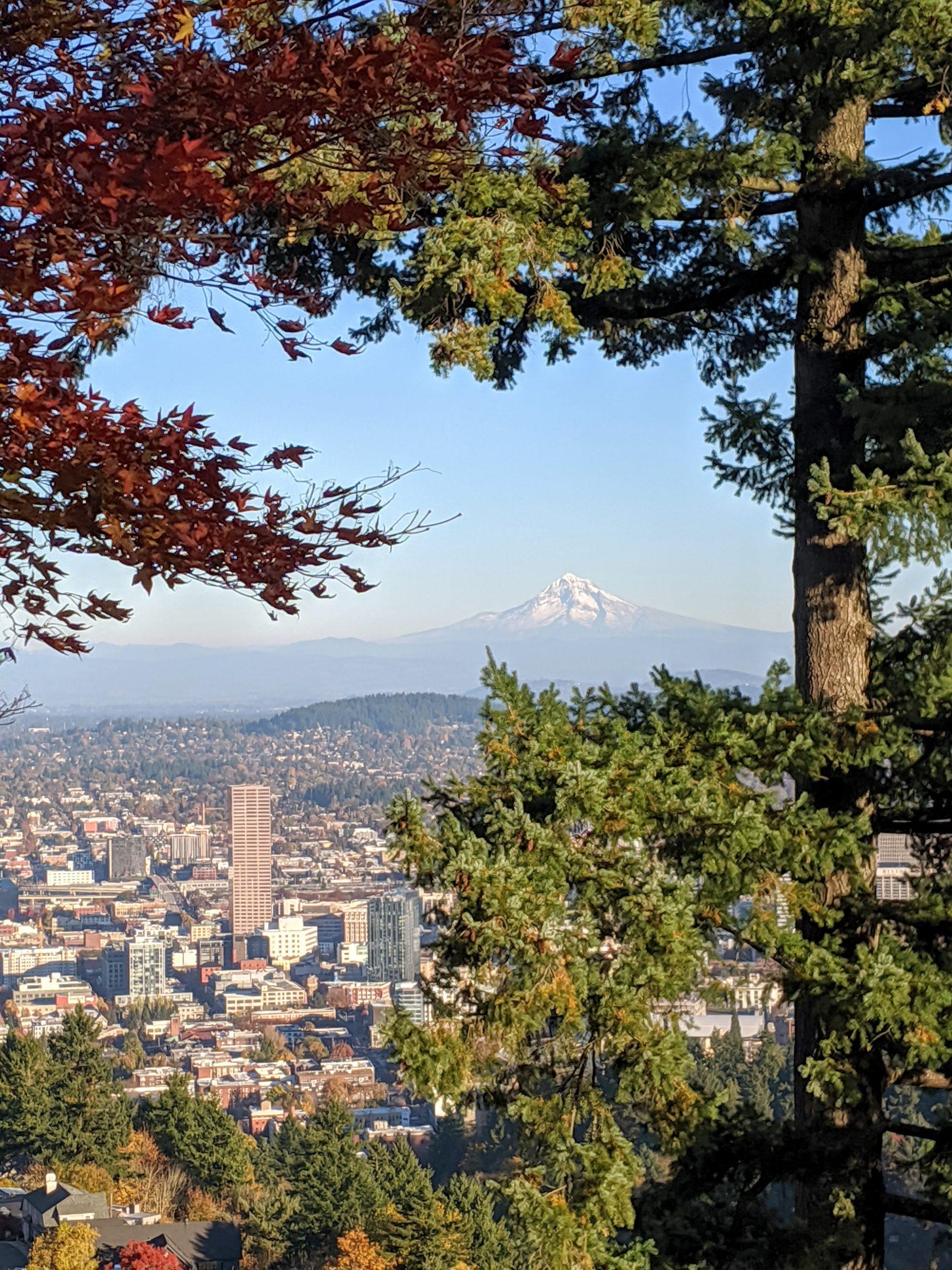 Portland Kid-Friendly Travel Guide